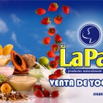 Frutas y yoghurt